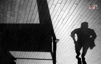 Shadow Stalker-11