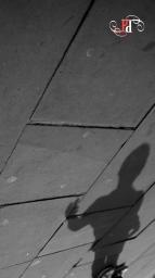 Shadow Stalker-12