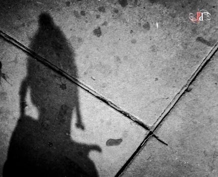 Shadow Stalker-13