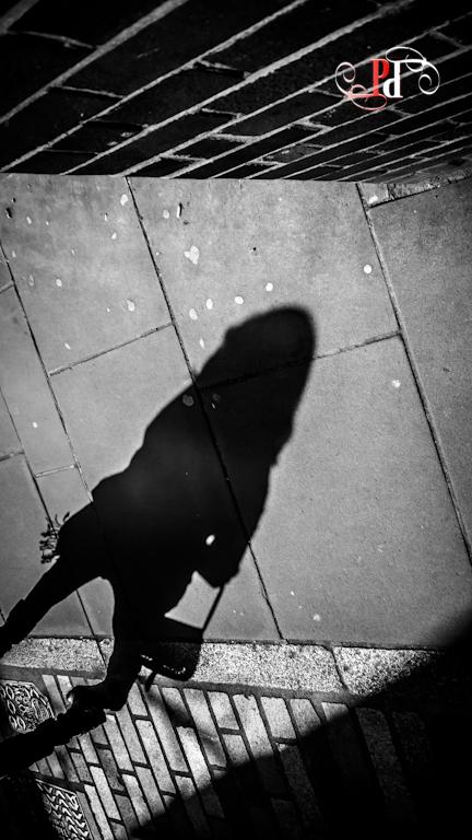 Shadow Stalker-15