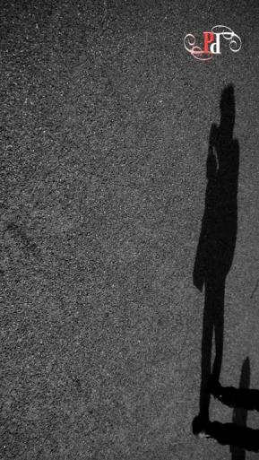 Shadow Stalker-22