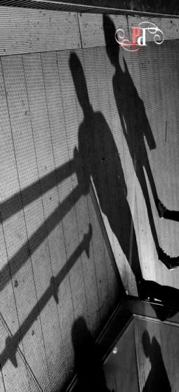 Shadow Stalker-29