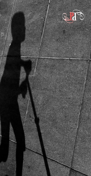 Shadow Stalker-31