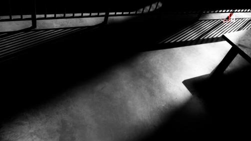 Shadow Stalker-34