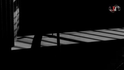 Shadow Stalker-35