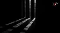 Shadow Stalker-41