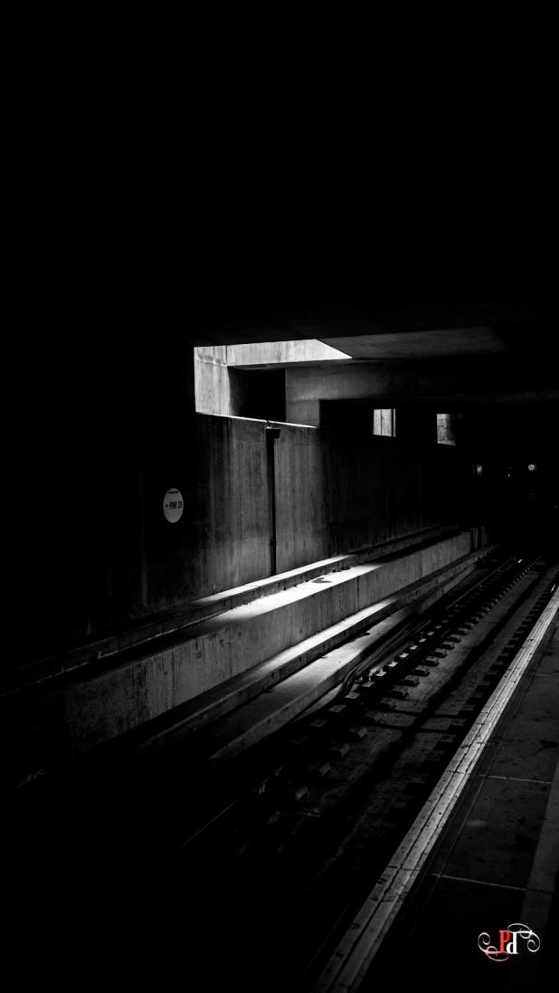 Shadow Stalker-44