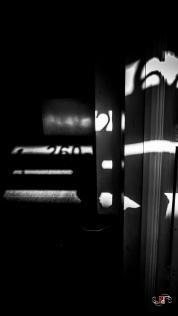 Shadow Stalker-48