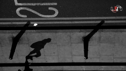 Shadow Stalker-5