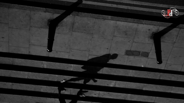 Shadow Stalker-6