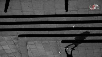 Shadow Stalker-7